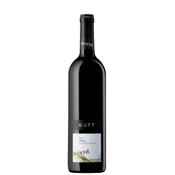 Accent Shiraz 2010